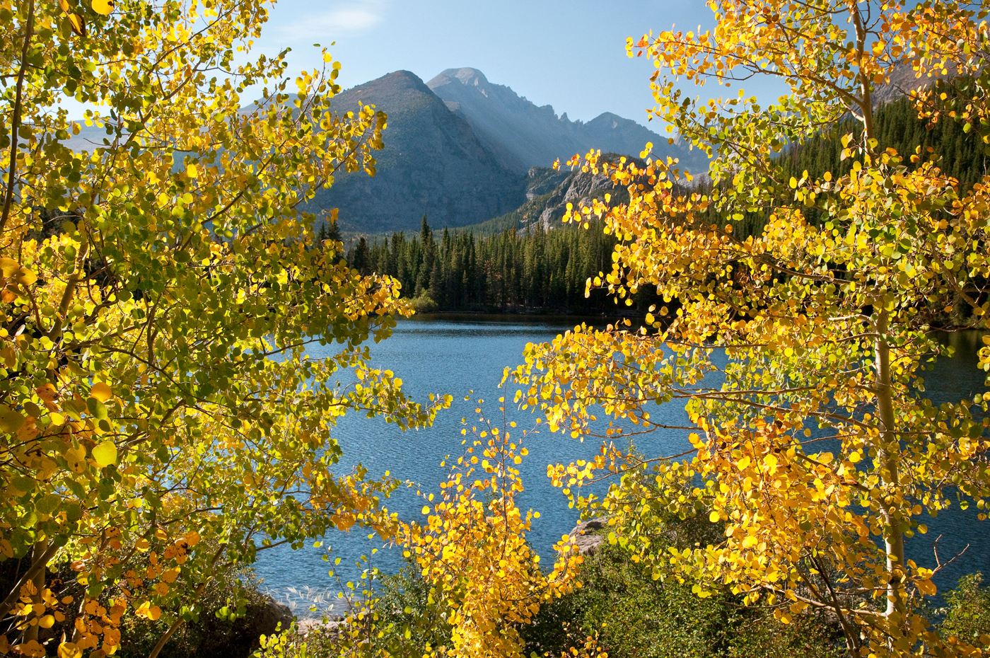 Fall leaves by a lake